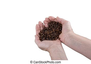 koffie bonen, holdingshanden