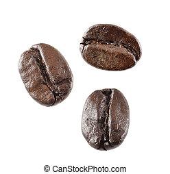 koffie boon