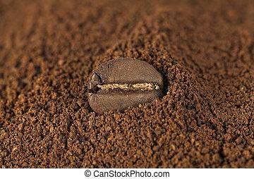 koffie, closeup, boon, hoop, geroosterd