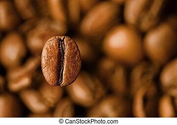 koffie, closeup, boon