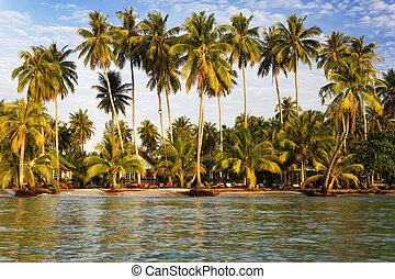 koh, σιάμ , παραλία , νησί , kood