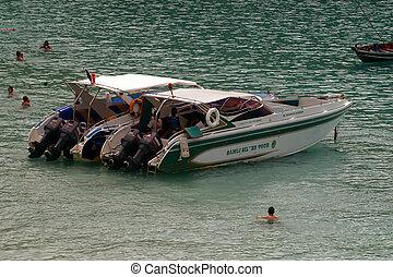koh, 平穏, トロピカル, 贅沢, ボート, paradis, 穏やかである, tao, スピード