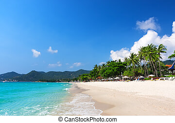 koh, chaweng, sandstrand, thailand, samui, ansicht