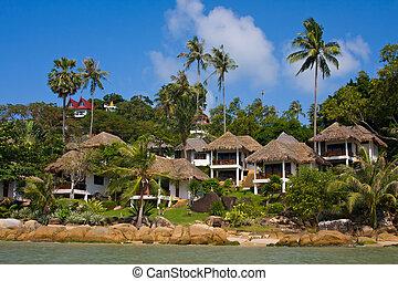 koh, isola, tropicale, casa, tailandia, spiaggia, samui