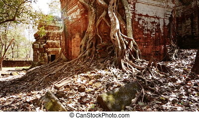 Koh Ker temple complex, Cambodia