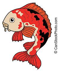 Koi fish on white background - vector illustration.