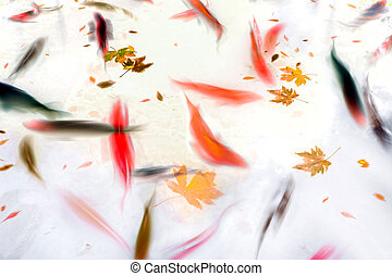 Koi Fish Swimming in Pond Abstract Illustration