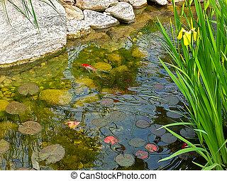 koi in rock garden pond