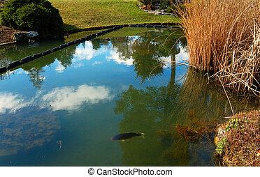 Koi pond koi fish in a natural stone pond for Koi pond quezon city