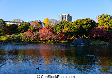 The Koishikawa Korakuen Garden is one of Tokyo's oldest and best Japanese gardens. The garden is attractive throughout the year, especially in late November and early December during the fall color season.
