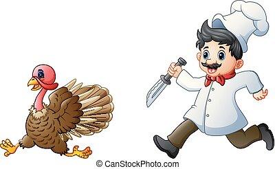 kok, turkije, achtervolgen, spotprent
