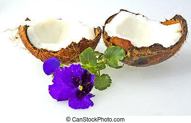 kokosnöt, och, violett