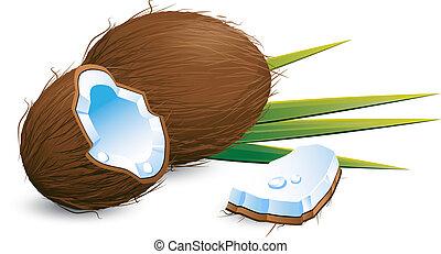 kokosnoten, op, witte