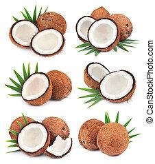 kokosnoten, verzameling