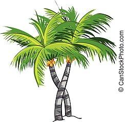 kokosnuß- baum, karikatur