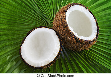 kokosnuss, ende, frisch, nett, ansicht