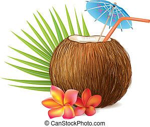 kokosnuss, getränk