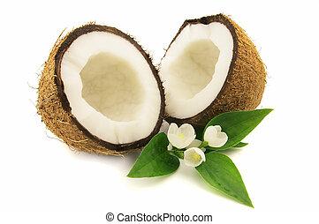 kokosnuss, jasmin