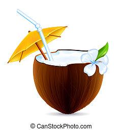 kokosnuss, vektor, cocktail