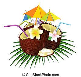 kokosový ořech, koktejl