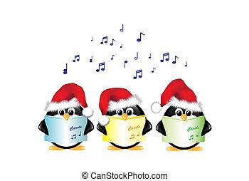 kolęda, pingwiny, śpiew, odizolowany