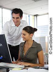 koledzy, komputer, młody, pracujący, desktop