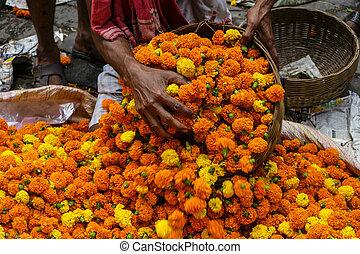 kolkata, 西, india., bengala