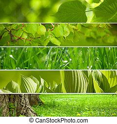 kollázs, háttér., zöld, természet