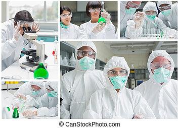 kollázs, közül, laboratórium, munkás