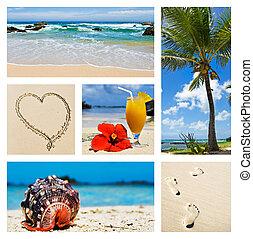 kollázs, sziget, színek, tropikus