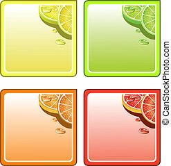 kollázs, vektor, állhatatos, poháralátét, gyümölcs