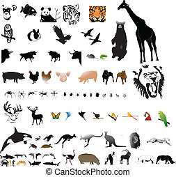kollektion, av, djuren