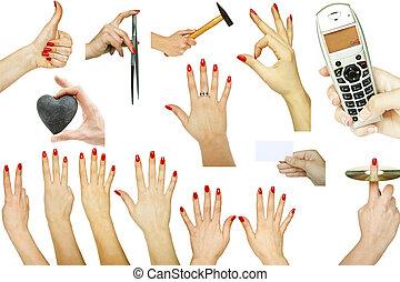kollektion, av, hand, rörelser, med, olika, begreppen, isolerat, vita, bakgrund
