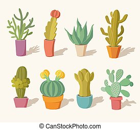 kollektion, av, kaktus