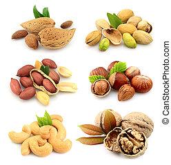 kollektion, av, nötter