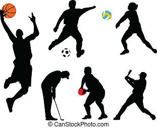 kollektion, av, olik, sport