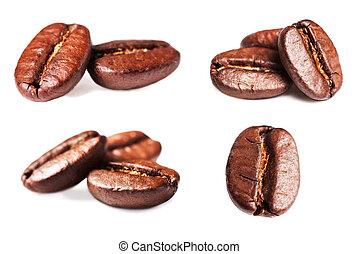kollektion, av, steket, kaffe böna, isolerat, vita,...
