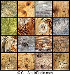 kollektion, av, trä plankor