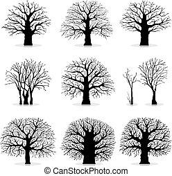 kollektion, av, träd, silhouettes