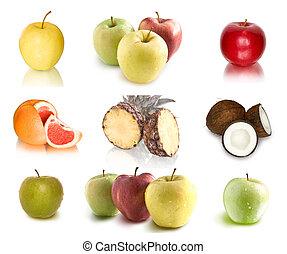 Kollektion, frukter