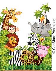 kollektion, lycklig, tecknad film, djur, zoo