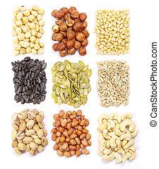 kollektion, nötter, frö