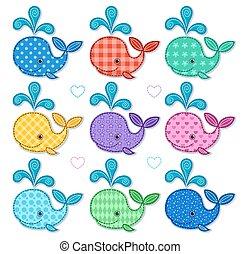 kolor, delfin, komplet, dziewięć, szczęśliwy