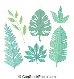 kolor, liście, tropikalny, zbiór, pastel