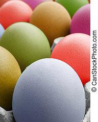 kolor, multi, jaja