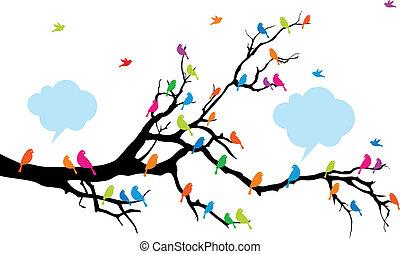 kolor, ptaszki, na, drzewo, wektor