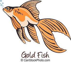 kolor, złota rybka, ilustracja