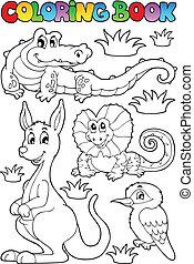 koloryt książka, australijski, fauna, 2