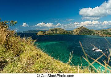 komodo, 珊瑚, 海灣