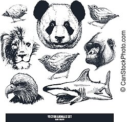 komplet, afrykanin, animals.